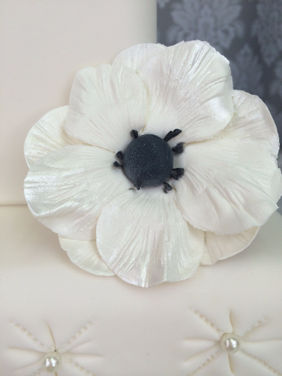 Sugar Flower Anemone Black Center