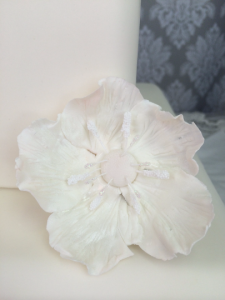 Sugar Flower Anemone White