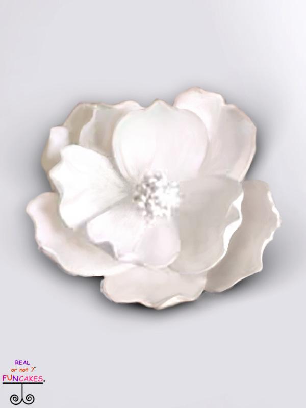 sugar flower white